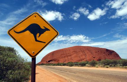 Struggling Qantas Will Shrink to Survive