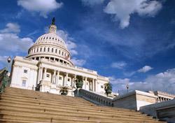 Washington, D.C., Tours for the Whole Family