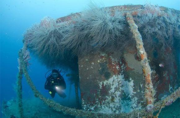 MV Bianca C shipwreck, Grenada