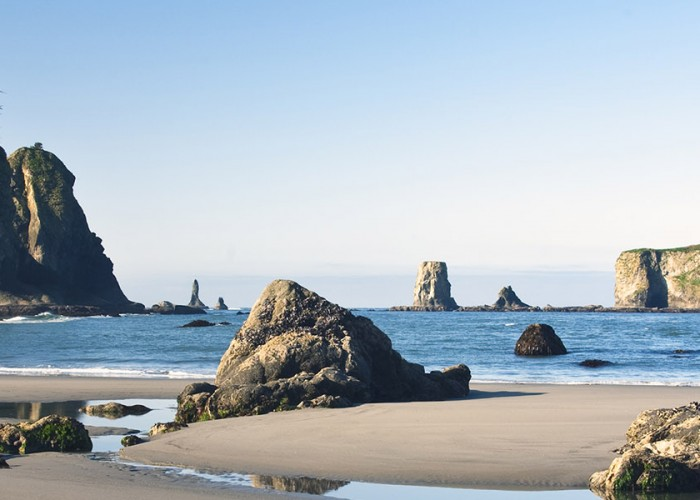Olympic National Park: Our May National Park of the Month