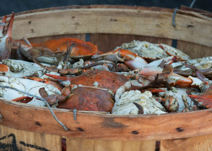 crab place crab cruise vip ticket giveaway