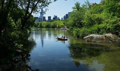 Hidden gems of central park 11