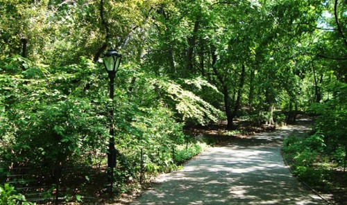 Hidden gems of central park 12