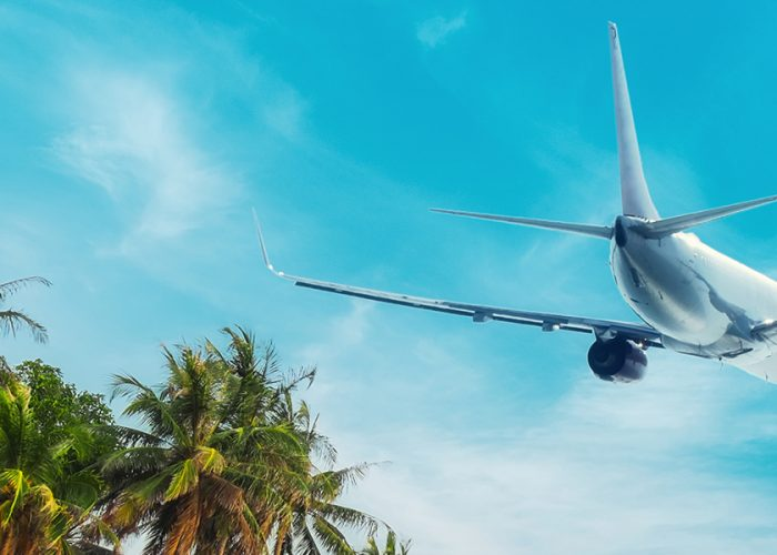 Airplane and Palm Trees Airfare Sale