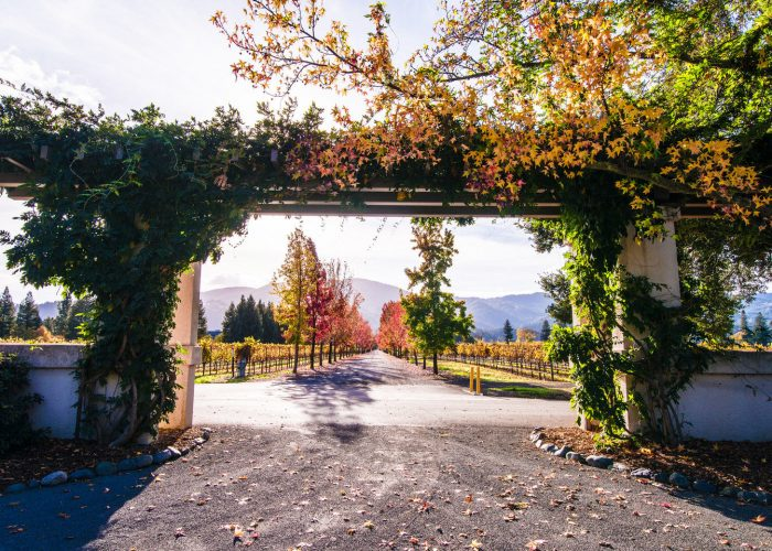 7 Things to Do in Napa This Fall