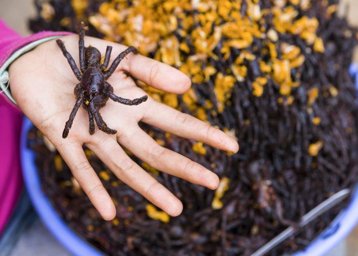 Tarantula (Cambodia)