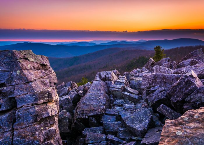 10 Best Things To Do In Virginia Smartertravel
