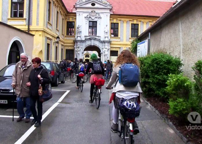 Vienna Wine Bike Tour