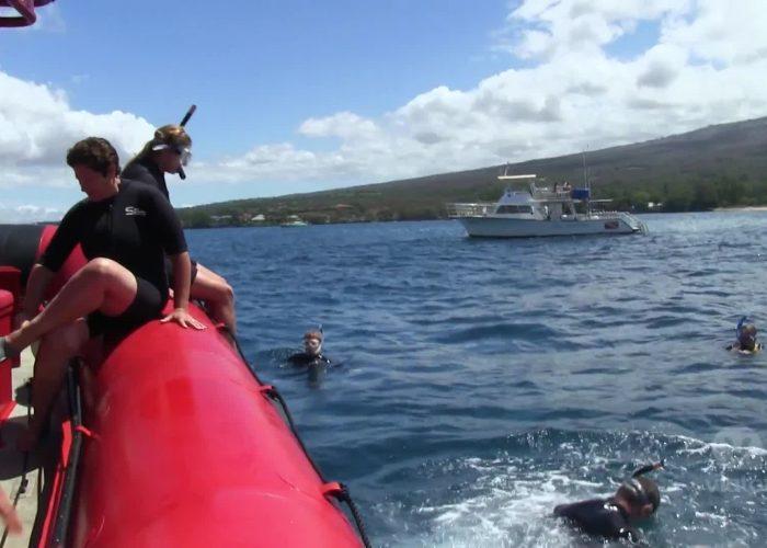 Maui: Molokini Snorkel Sea Turtle Adventure Tour