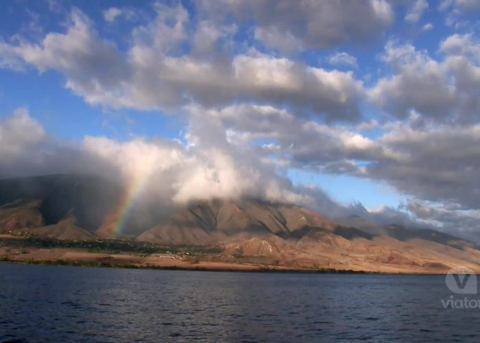 Maui: Sunset Dinner Cruise