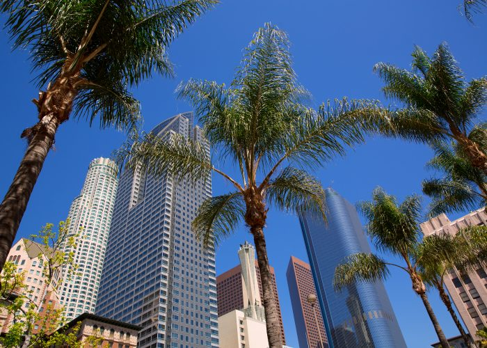 Los Angeles: Save 20% Off Your Rate