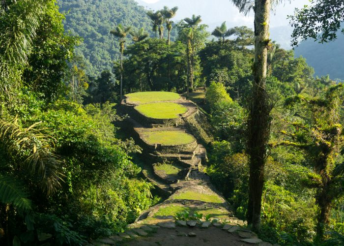 things to do in colombia lost city