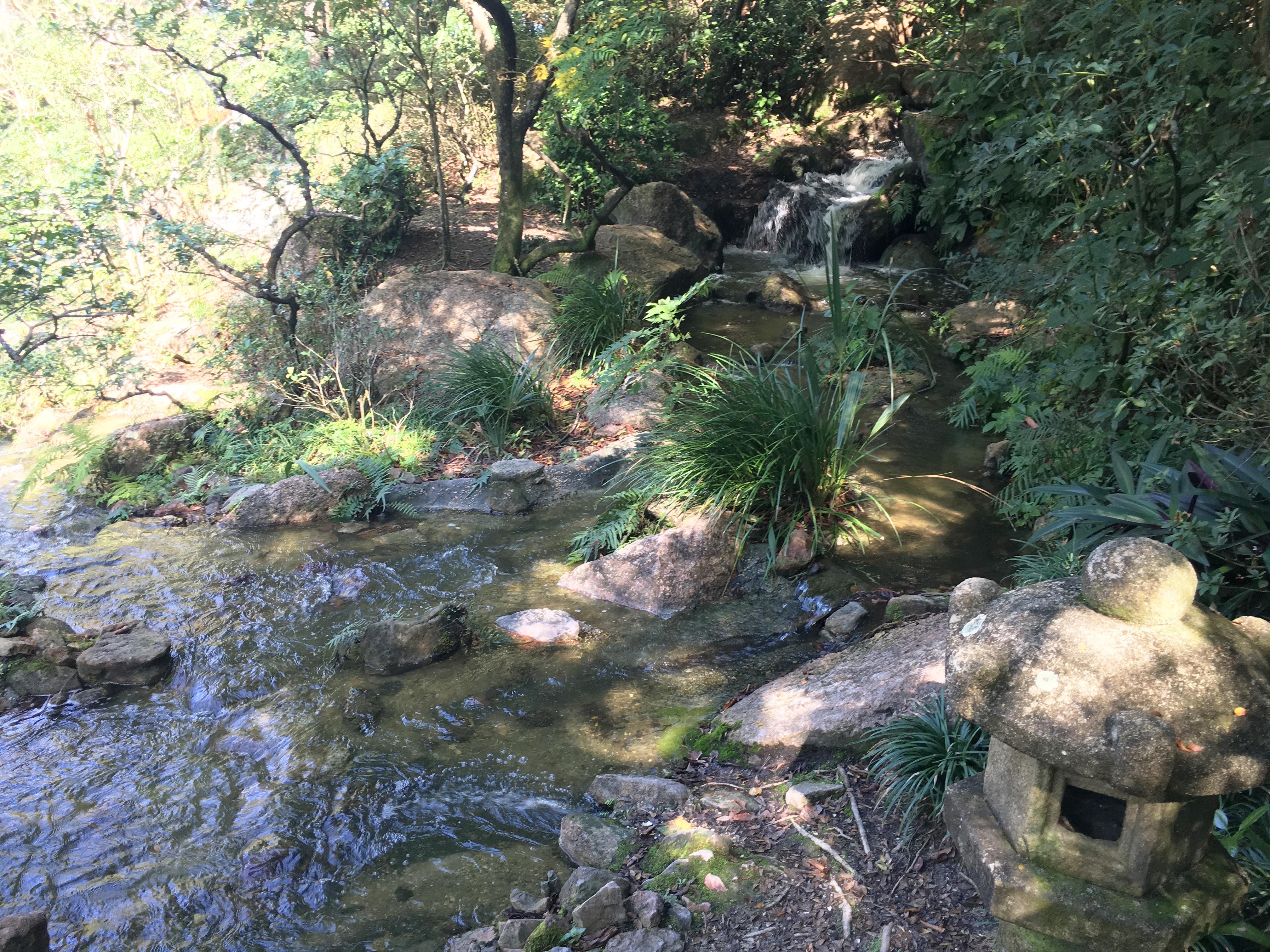 Morikami museum japanese garden, palm beach florida