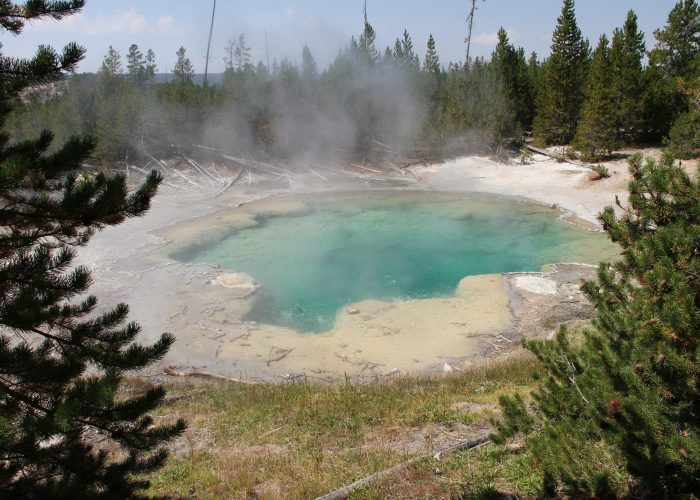 Yellowstone & Salt Lake City: 4-Day Tour from $438