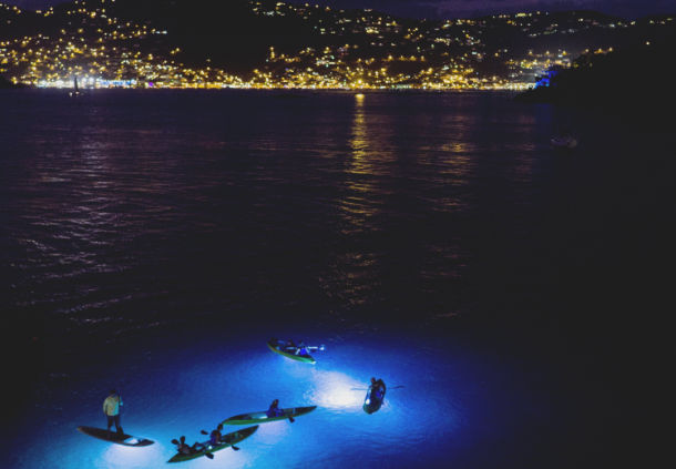 Clear-Bottom Kayaking with LED Lights in St. Thomas