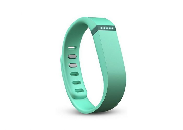 travel products FitBit