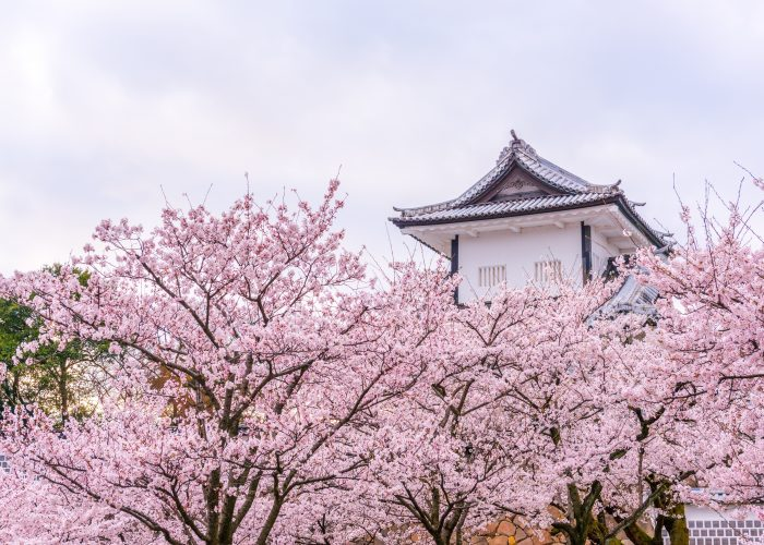 up-and-coming destinations in 2017 japan