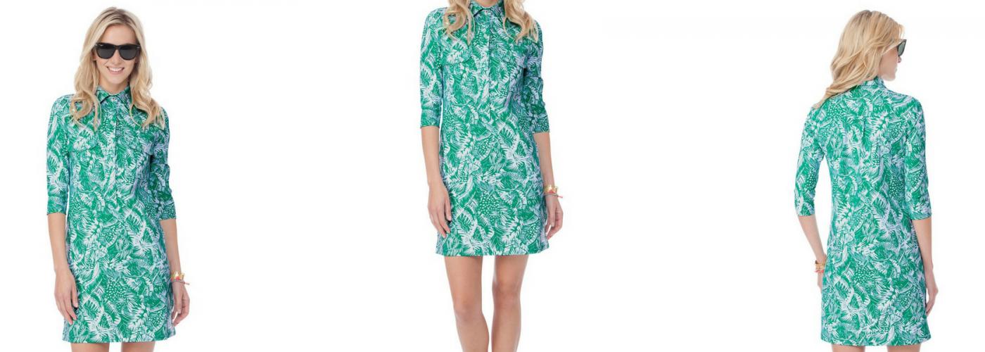 Persifor's Winpenny Dress