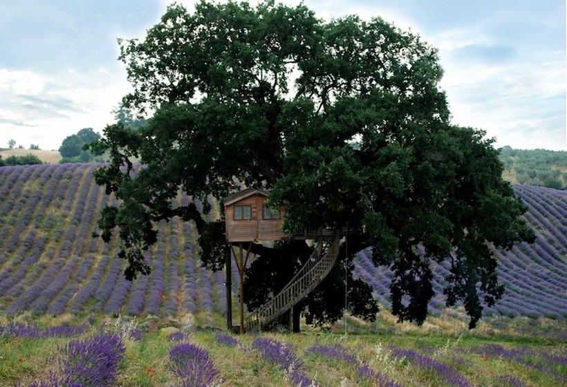 La piantata treehouse hotel