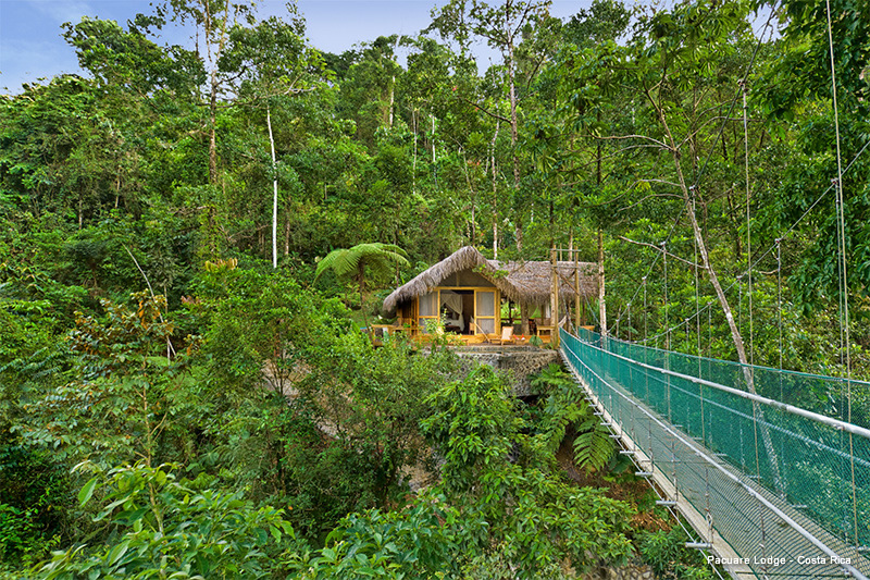 treehouse hotel pacuare lodge