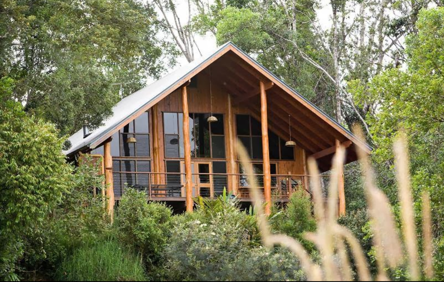 treehouse hotels the canopy australia