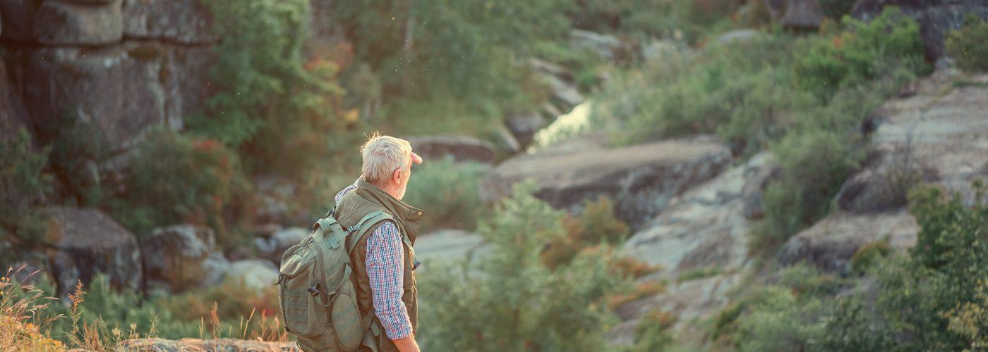 hiker in rocky green landscape
