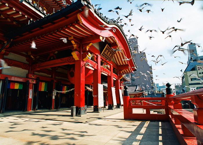 нагойский храм и птицы