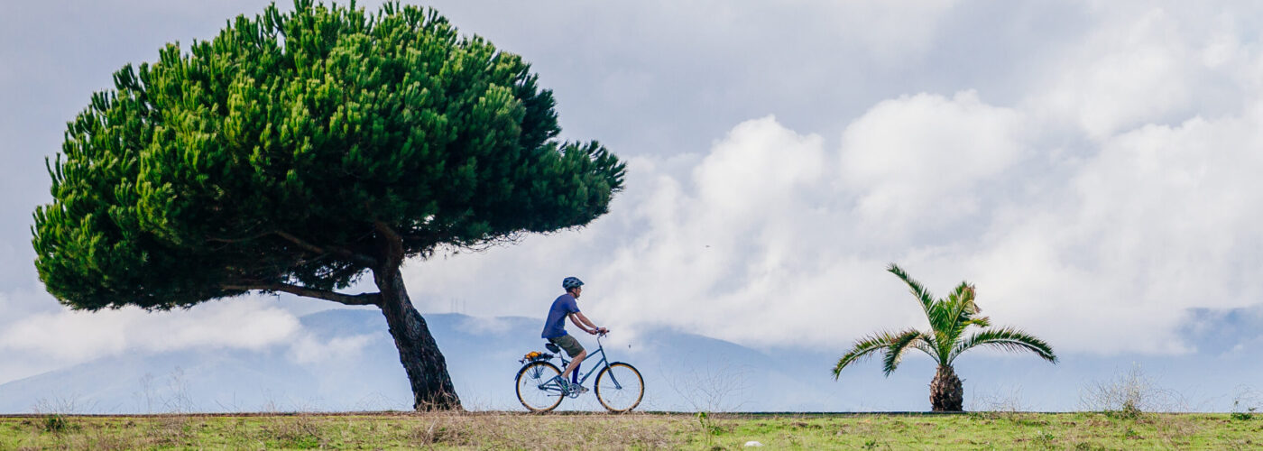 man riding bike next to tree
