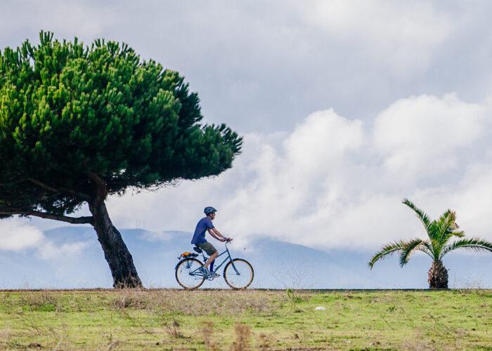 man riding bike next to tree
