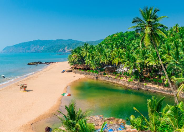 Warnings and Dangers in Goa, Drugs