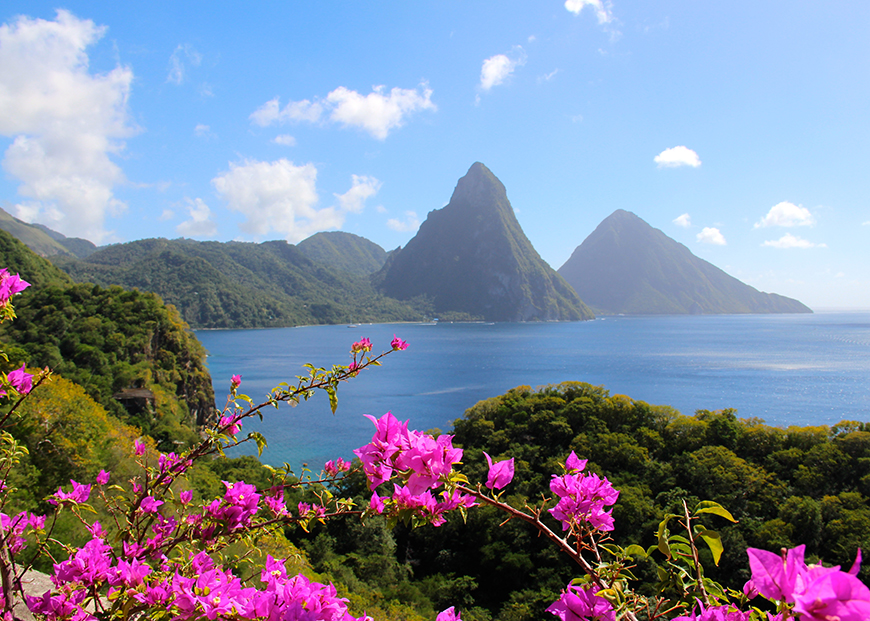 st lucia twin pitons with pink flowers