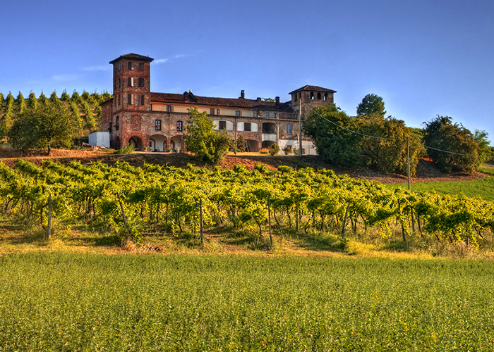 winery in piedmont italy