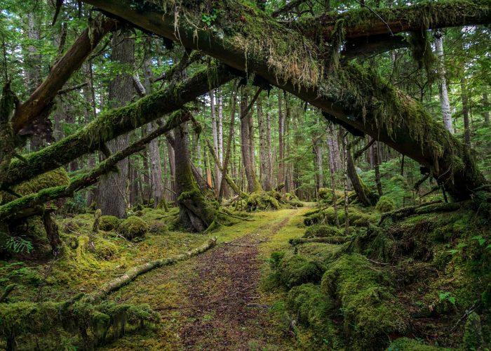 10 Secret Places to Visit in British Columbia