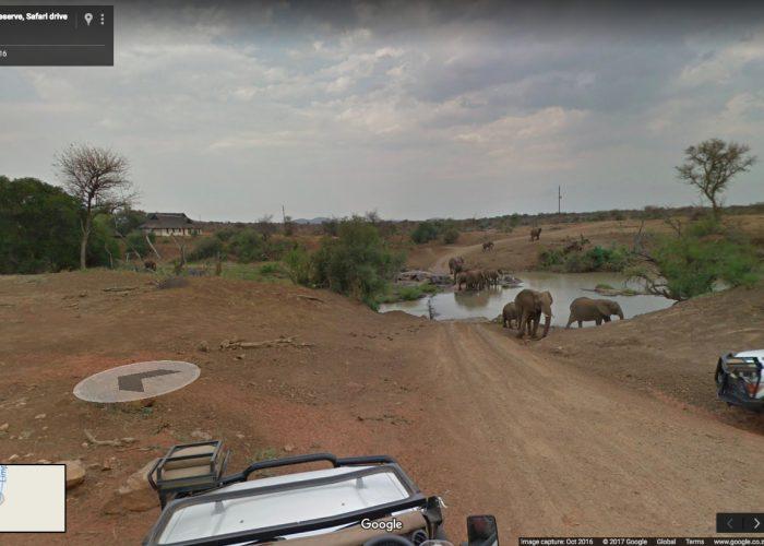 Safari Google Earth