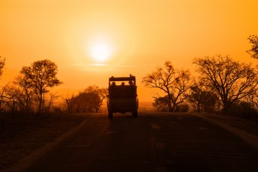 Silhouette of safari vehicle against sunset