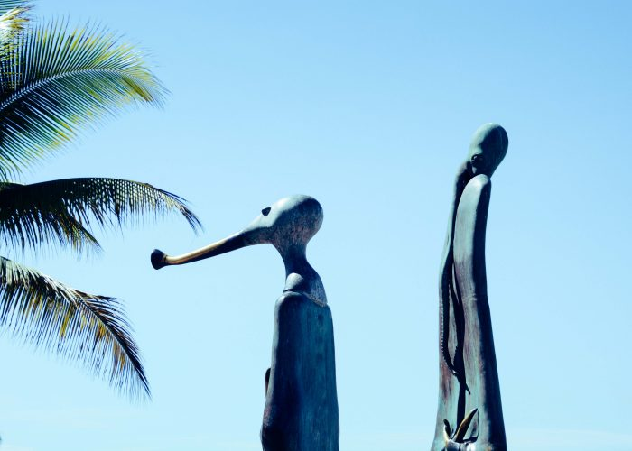 best things to do in puerto vallarta cover