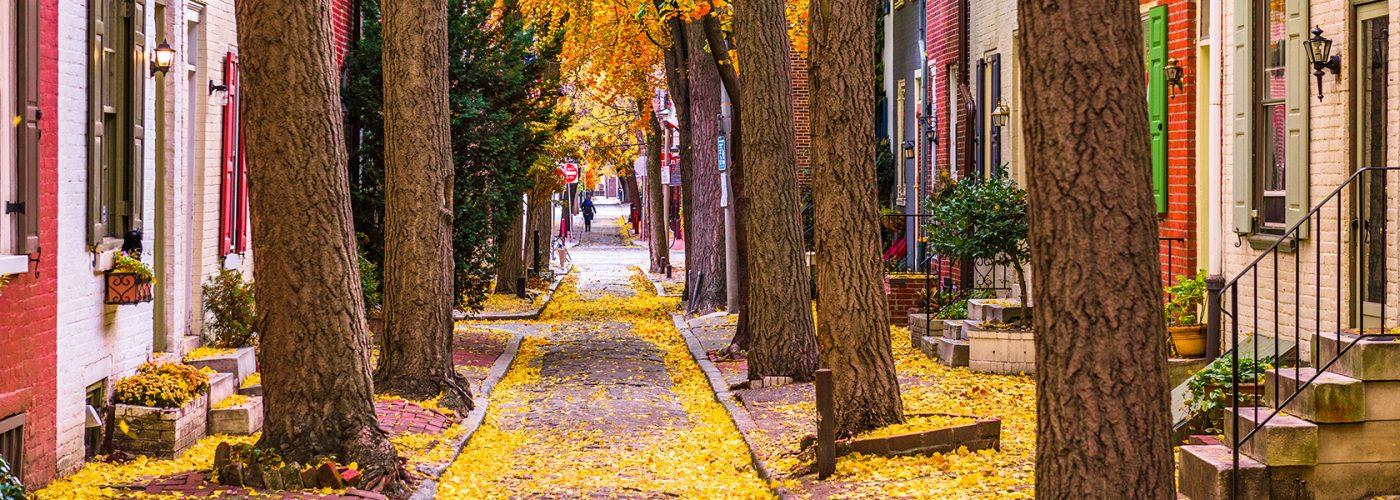 autumn street in philadelphia