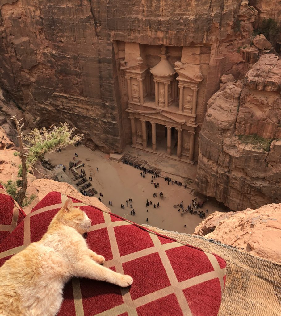Petra from above cat jordan travel