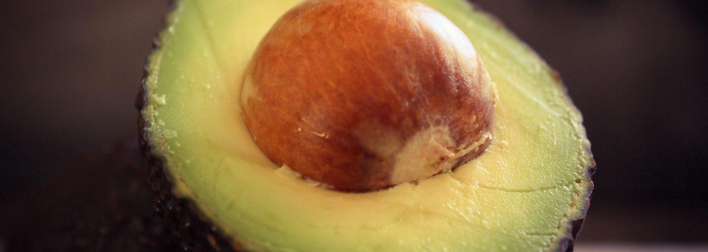 avocado museum