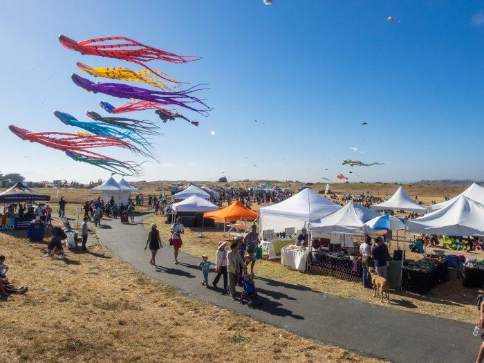 Kite festival at the berkeley marina