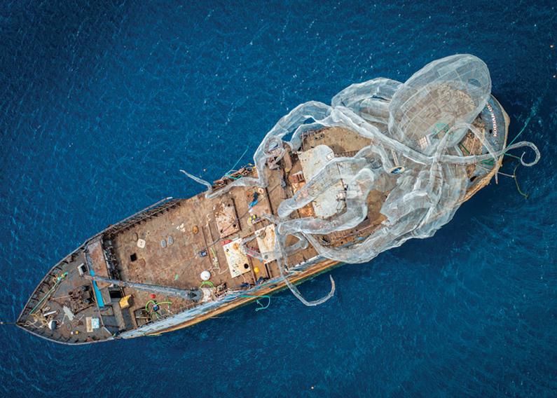 Kodiak queen before sinking in bvi