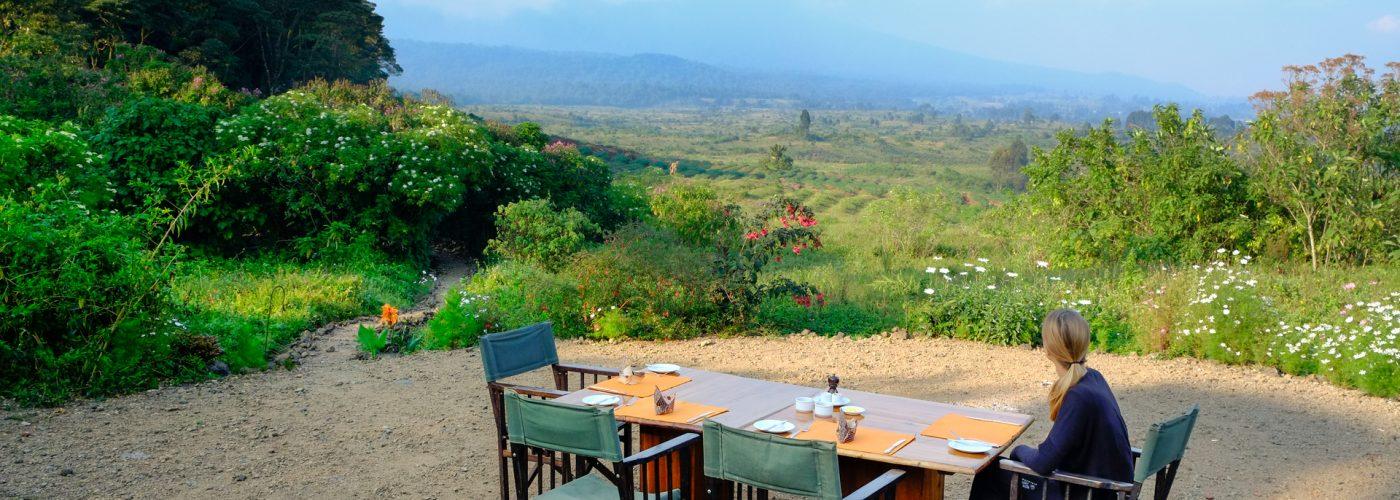 woman on luxury safari overlooking scenery