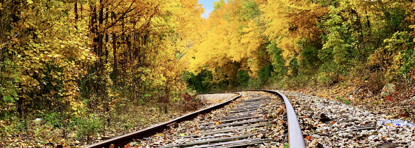 train tracks with fall foliage.