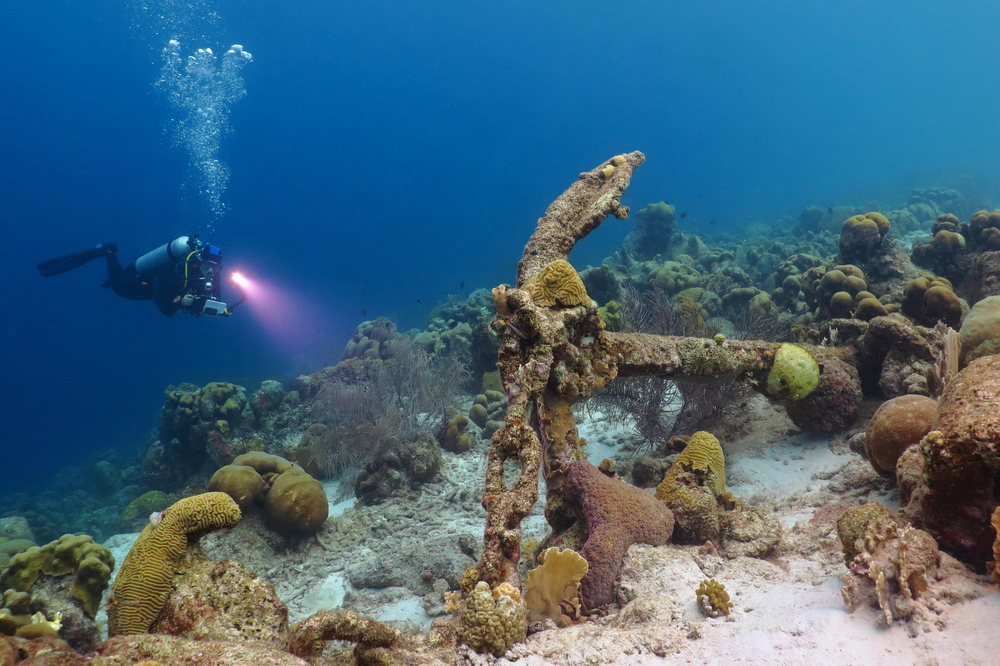 underwater diver in coral reef curacao