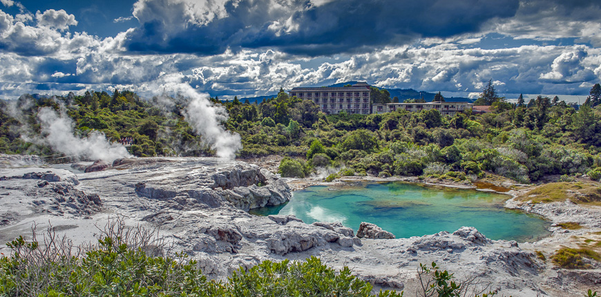 Whakarewarewa geyser at te pui thermal park in geothermal valley of rotorua