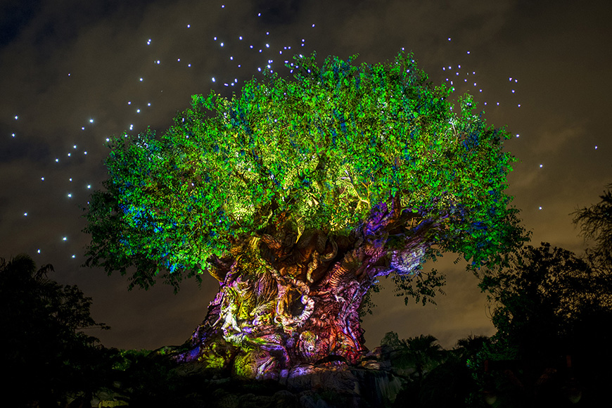 Disney's Animal Kingdom iconic tree of life