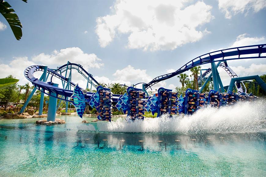 Manta Dips a Wing at SeaWorld Orlando
