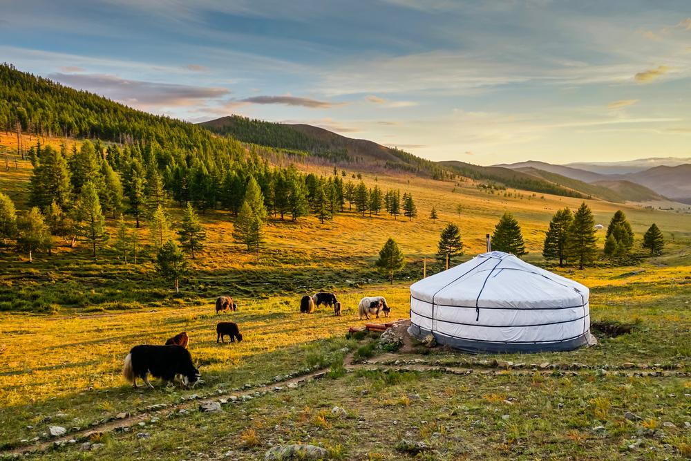 mongolian-yurt