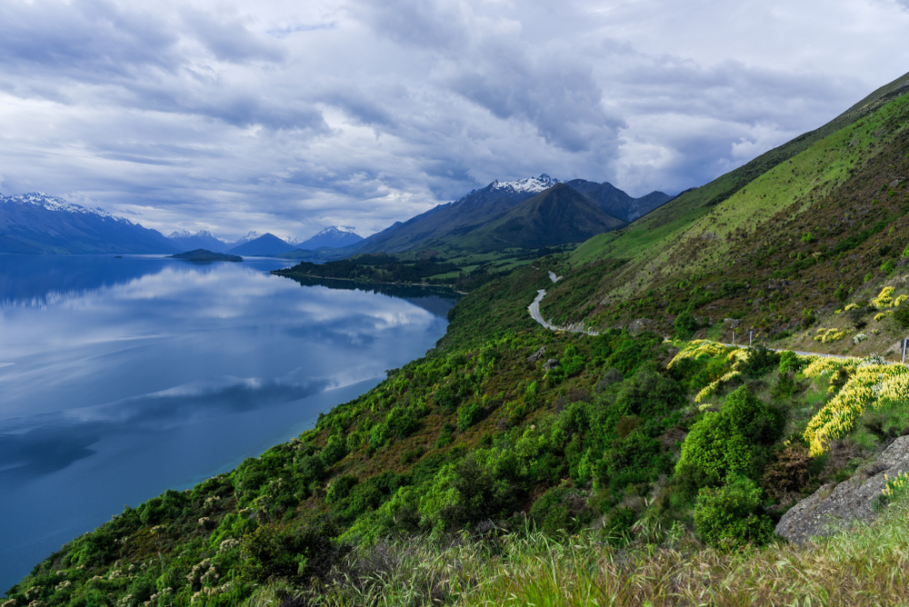 Road winding along a scenic stretch of the new zealand coast
