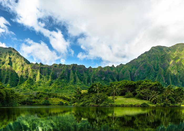 garden and mountains in oahu